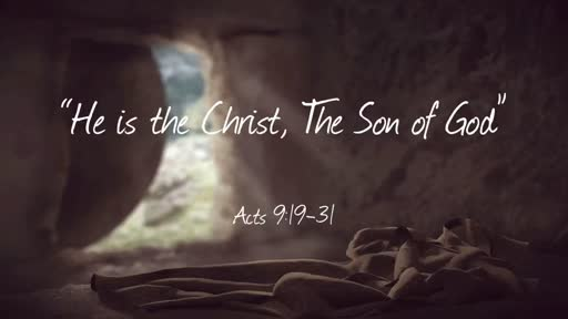 Whose Son is theChrist?